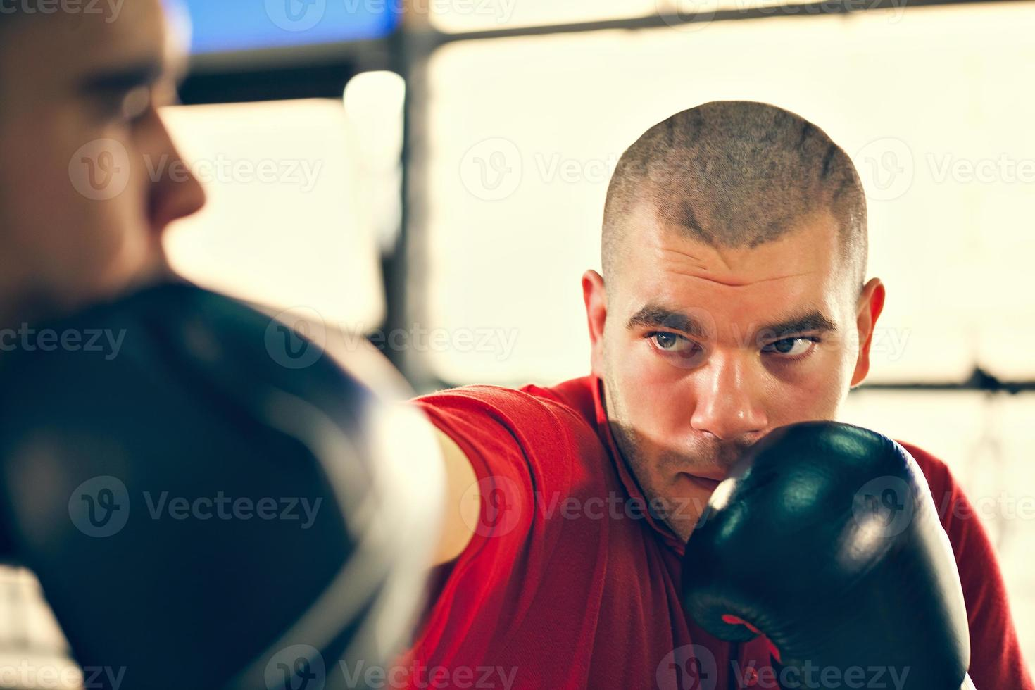sparring photo