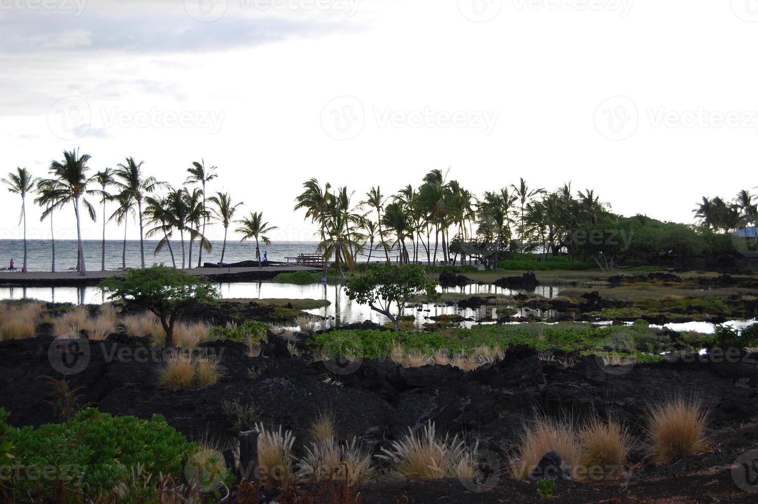 kona, hawaï photo