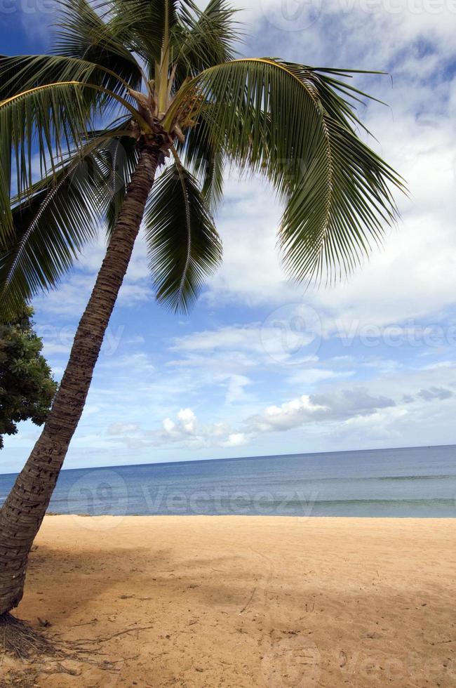 la plage photo