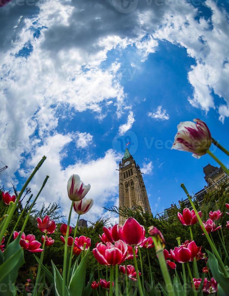 tour de la paix et bâtiment du parlement photo