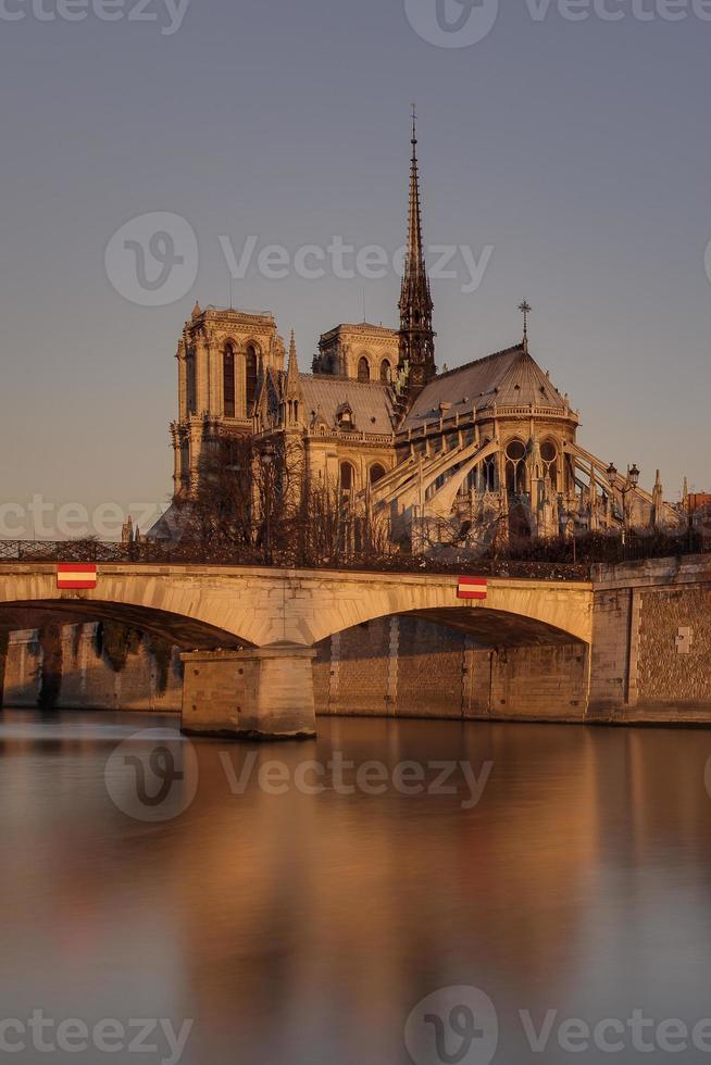notre Dame de Paris photo