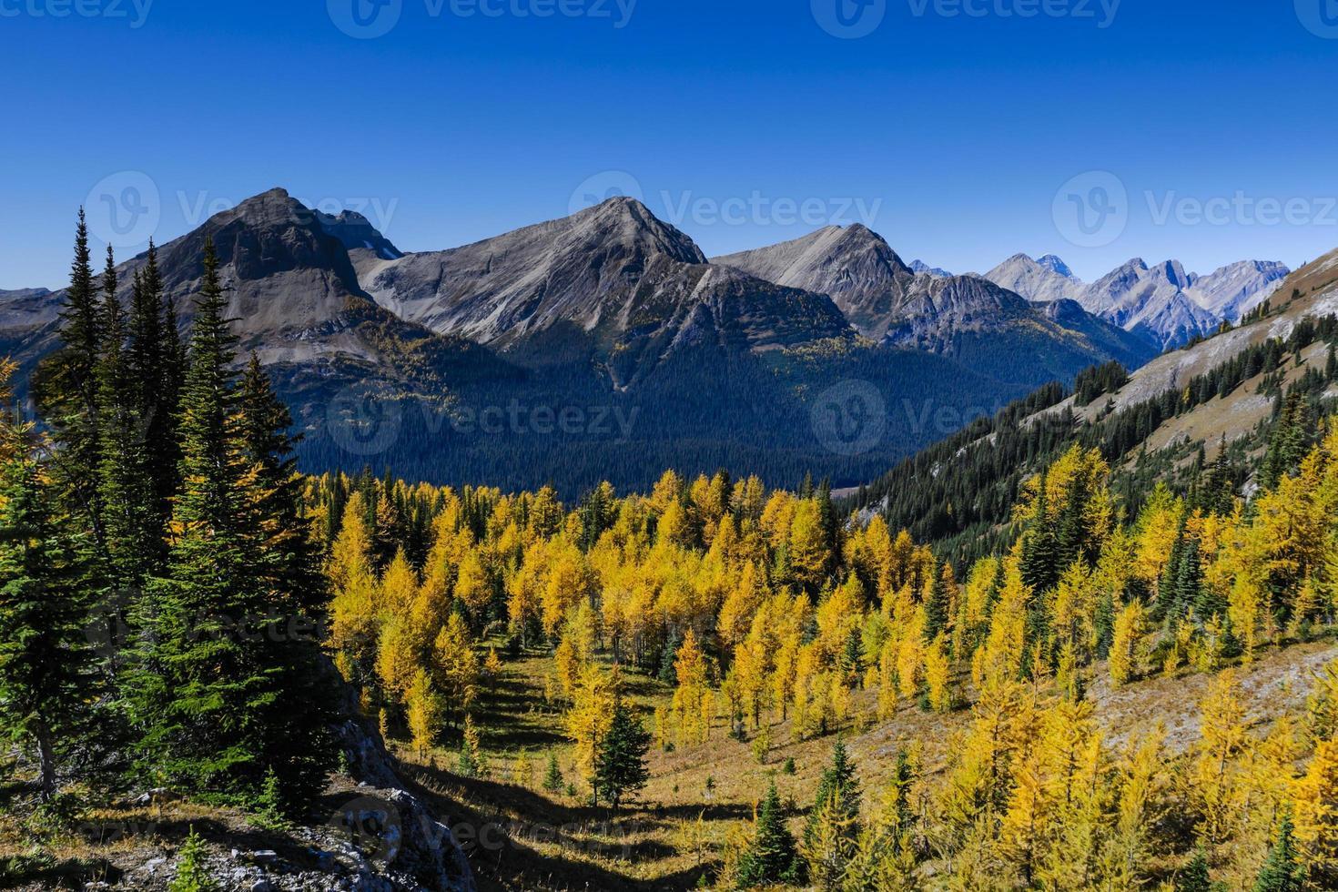 beaux paysages de montagne en automne photo