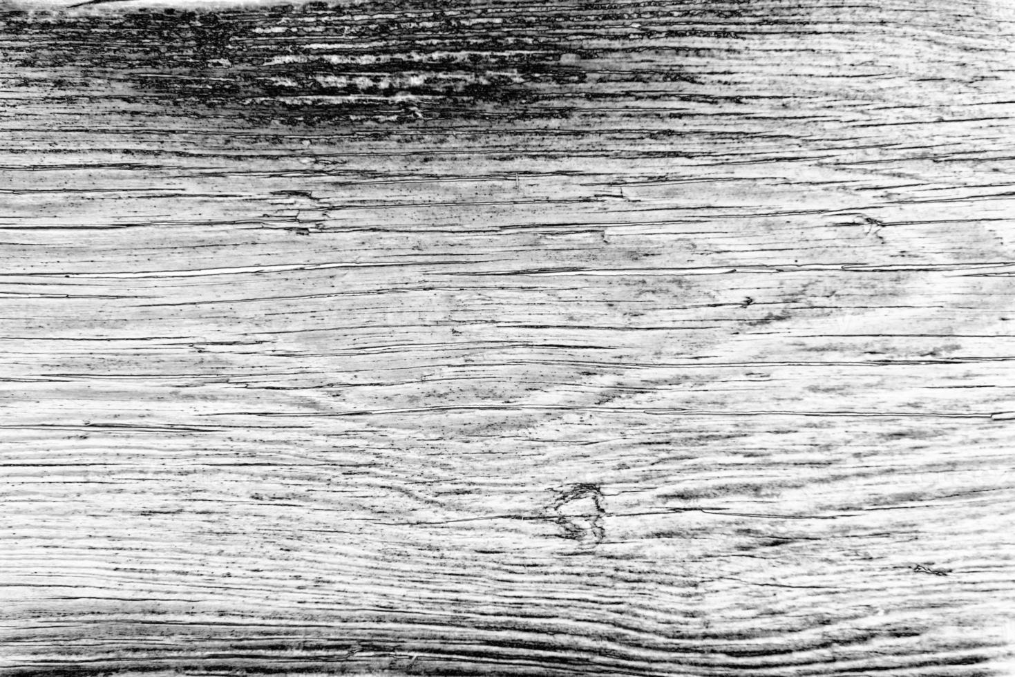 texture. bois photo