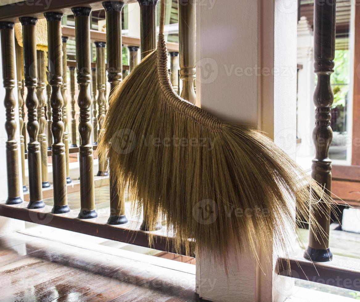 balai asiatique photo