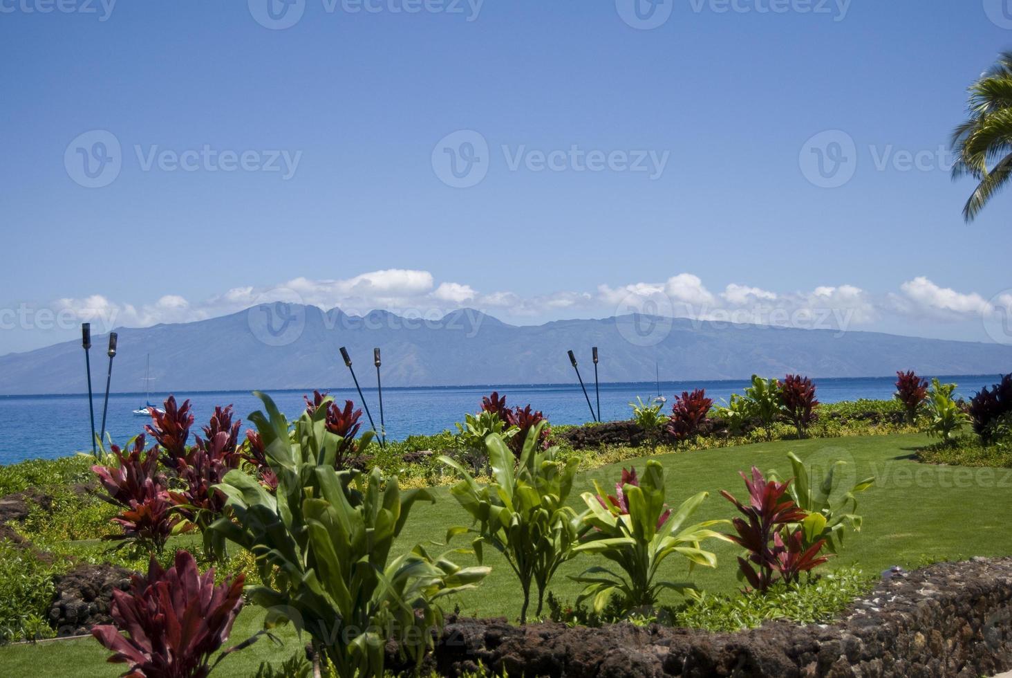 Maui ensoleillé photo