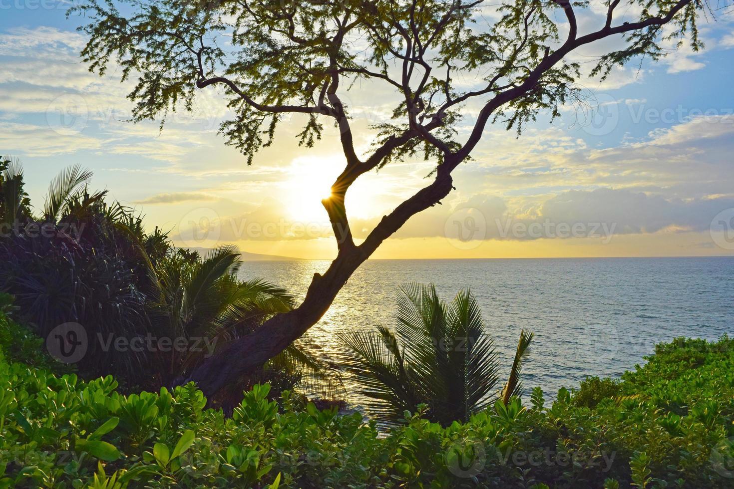 Wailea Point, Maui photo