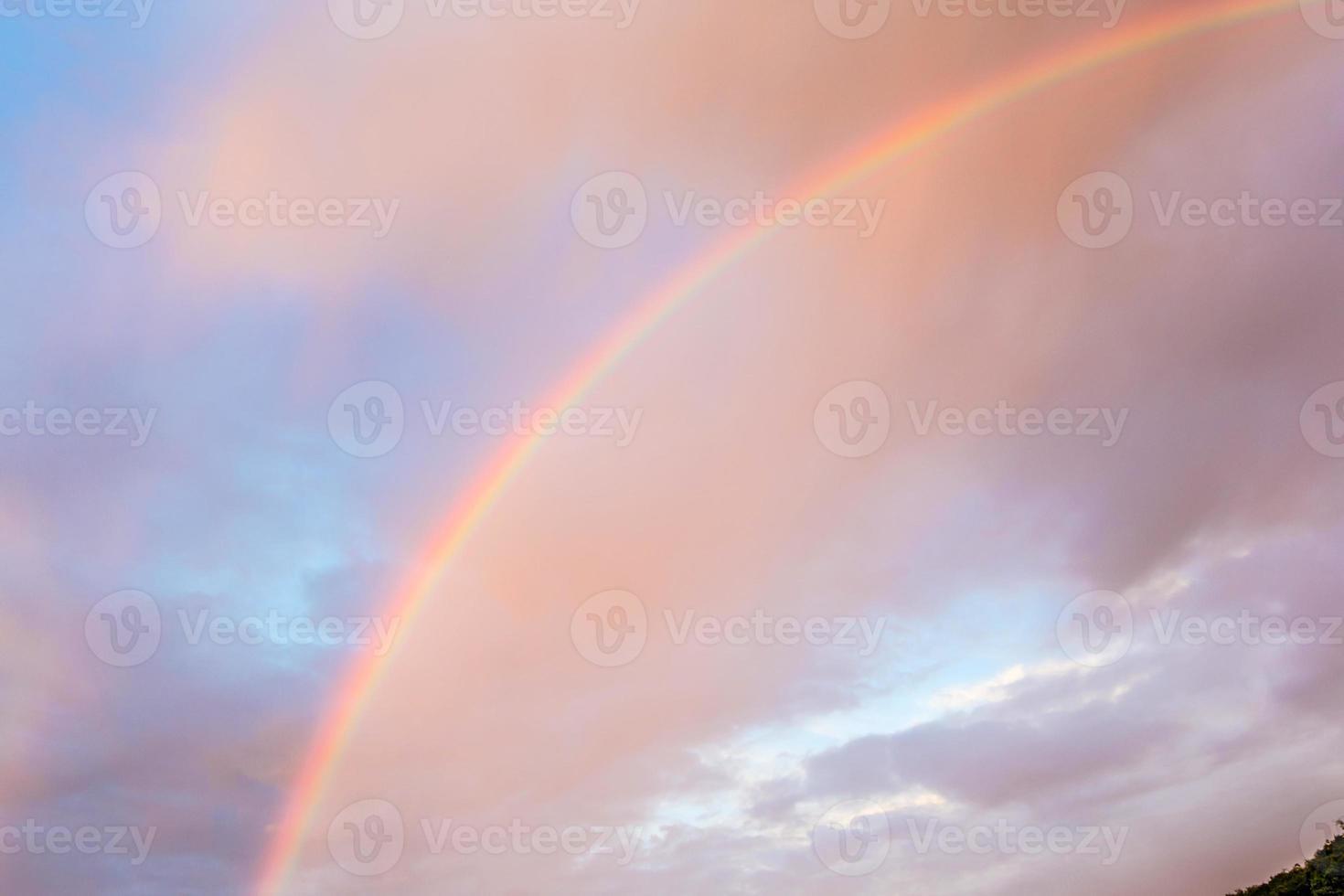 arc-en-ciel sur la forêt tropicale photo
