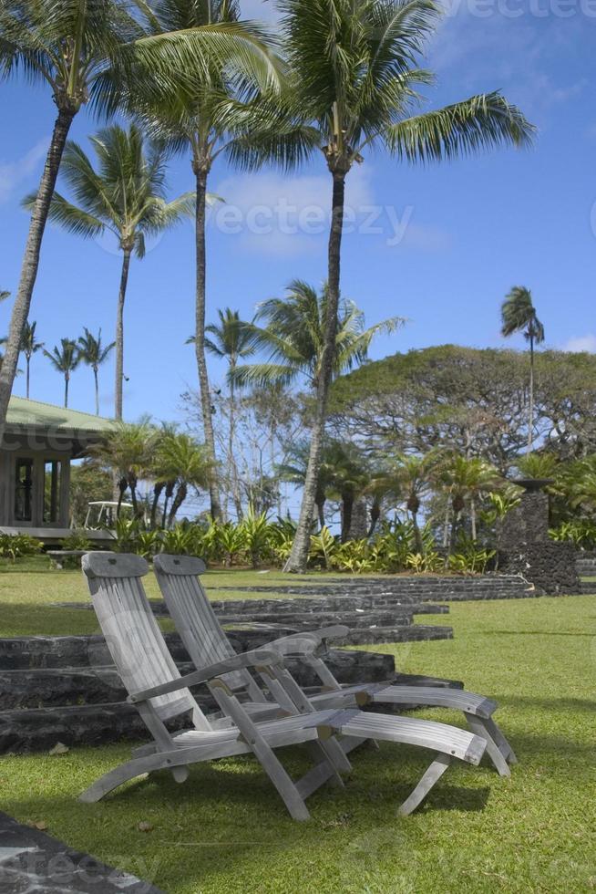 chaises hawaii photo