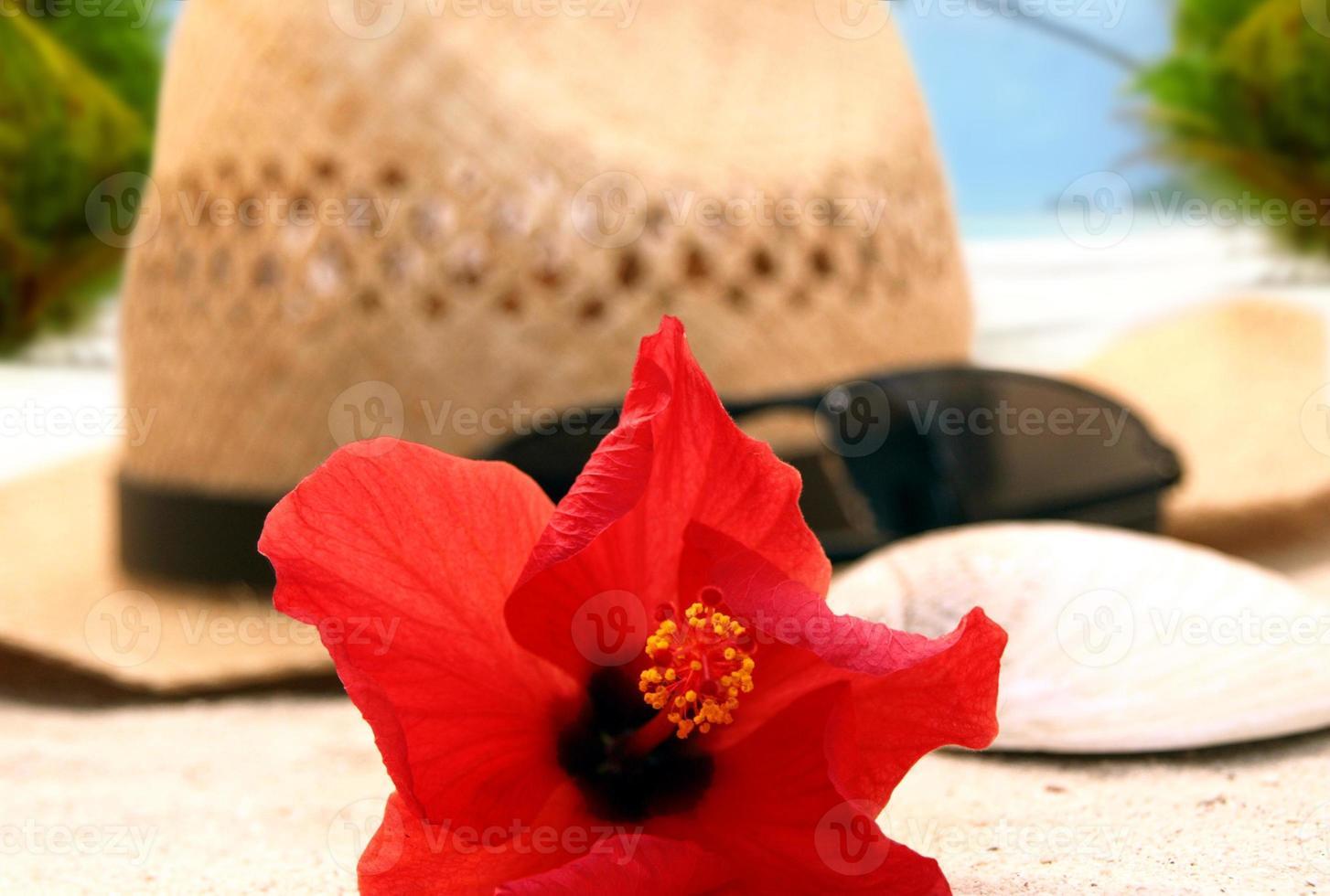 chapeau sur la plage photo