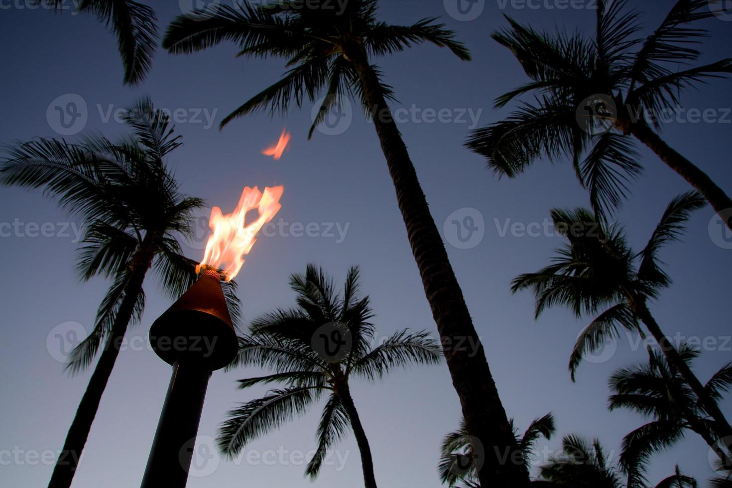 torche photo