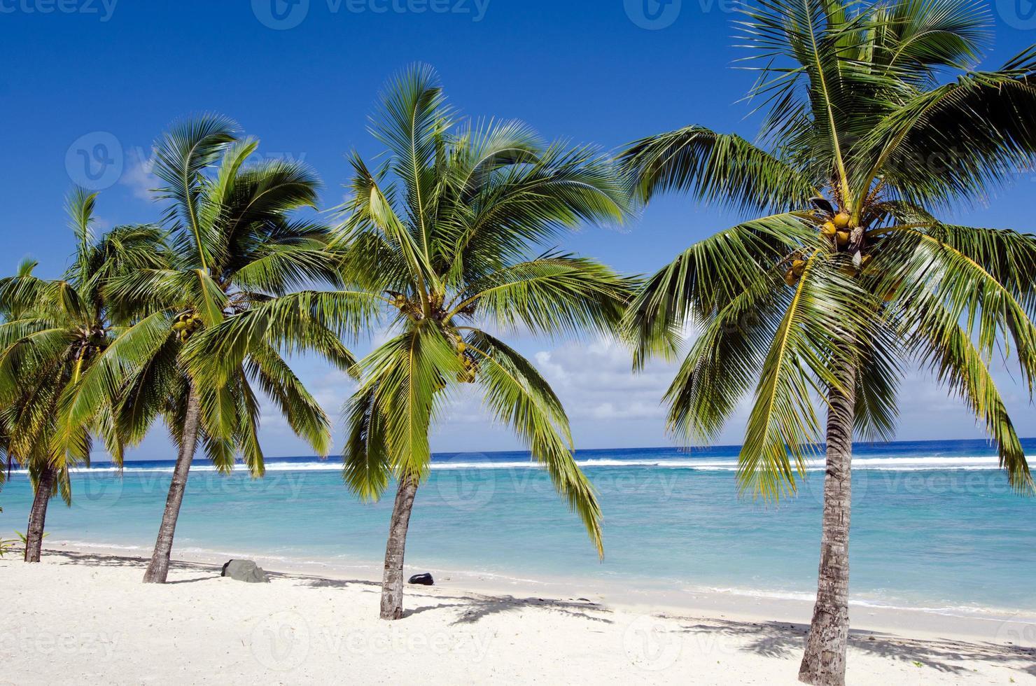 Plage Titikaveka dans les îles Cook de Rarotonga photo