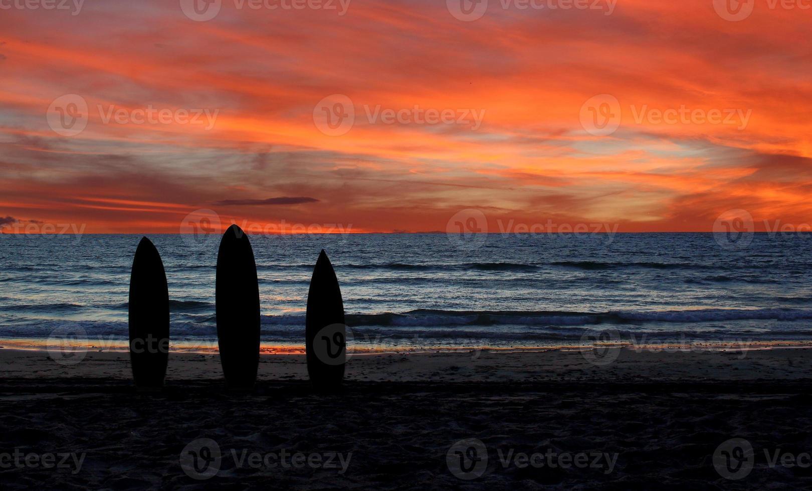 silhouette de planche de surf photo