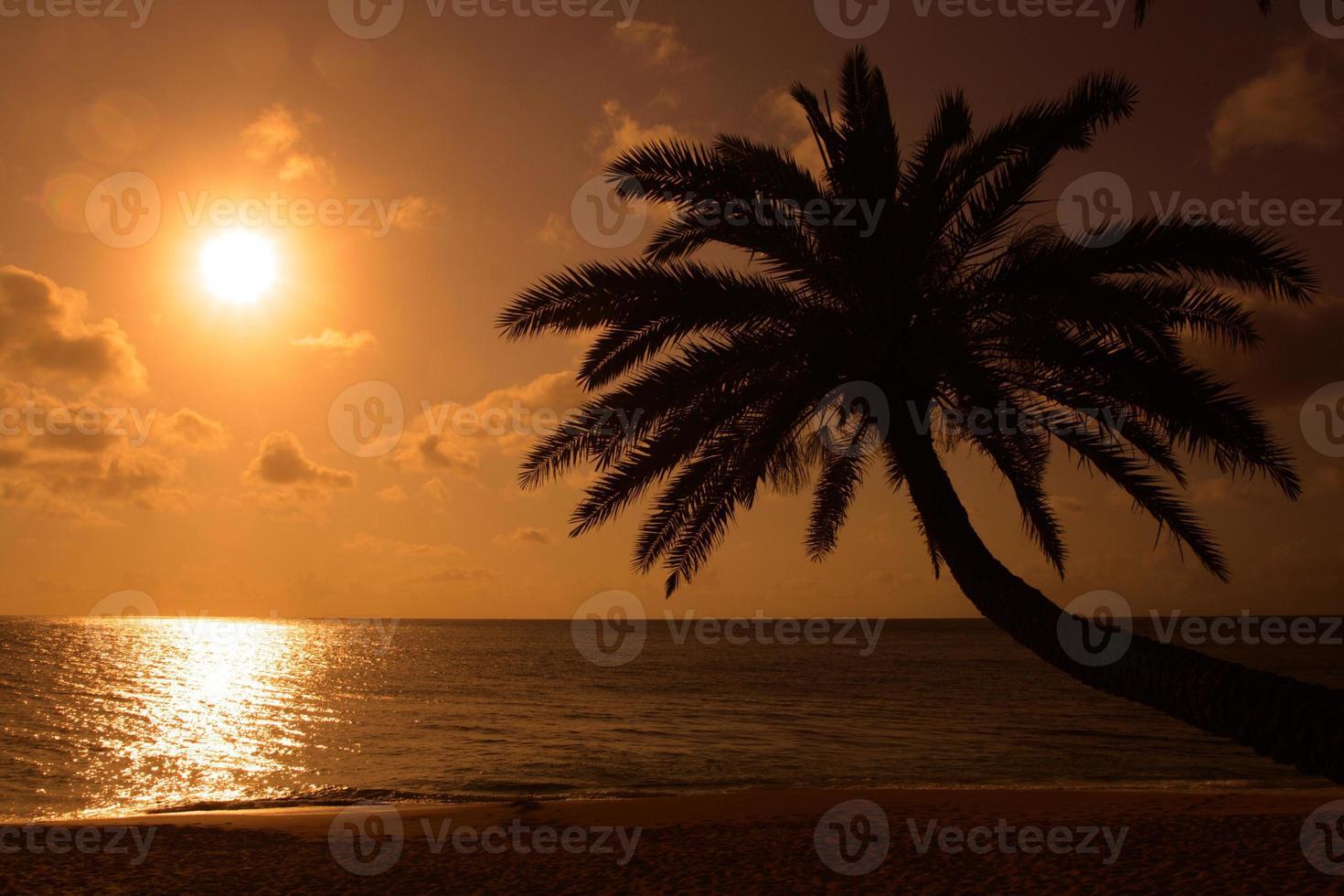 Sunset Beach, O'ahu, Hawaii photo