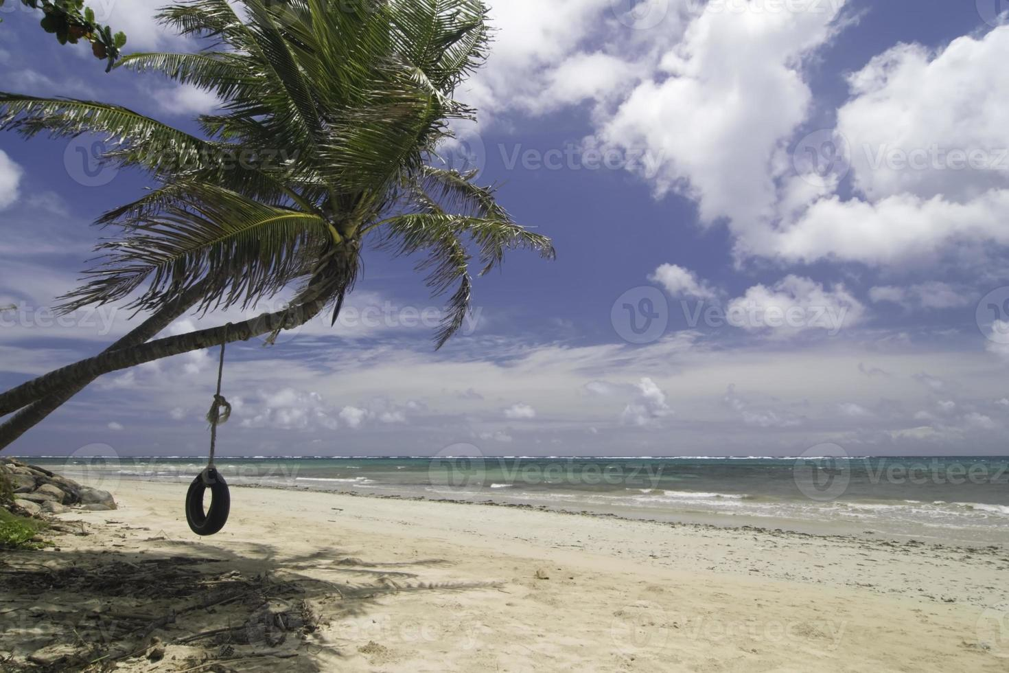 balançoire de pneu de plage tropicale photo