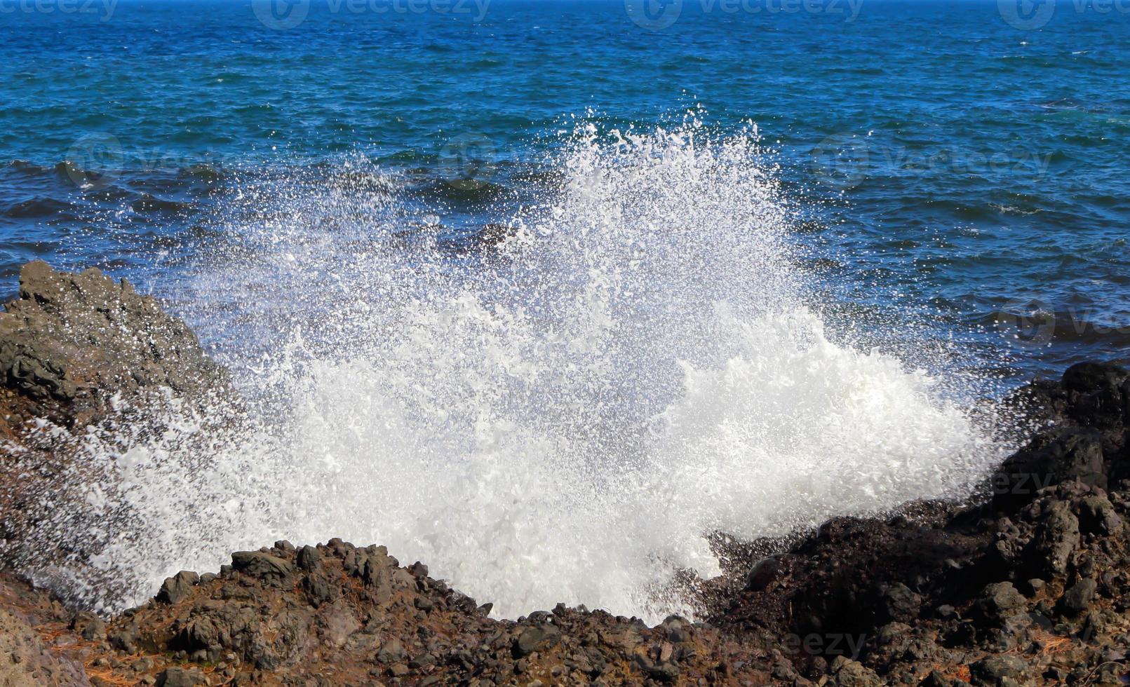 vague hawaïenne photo