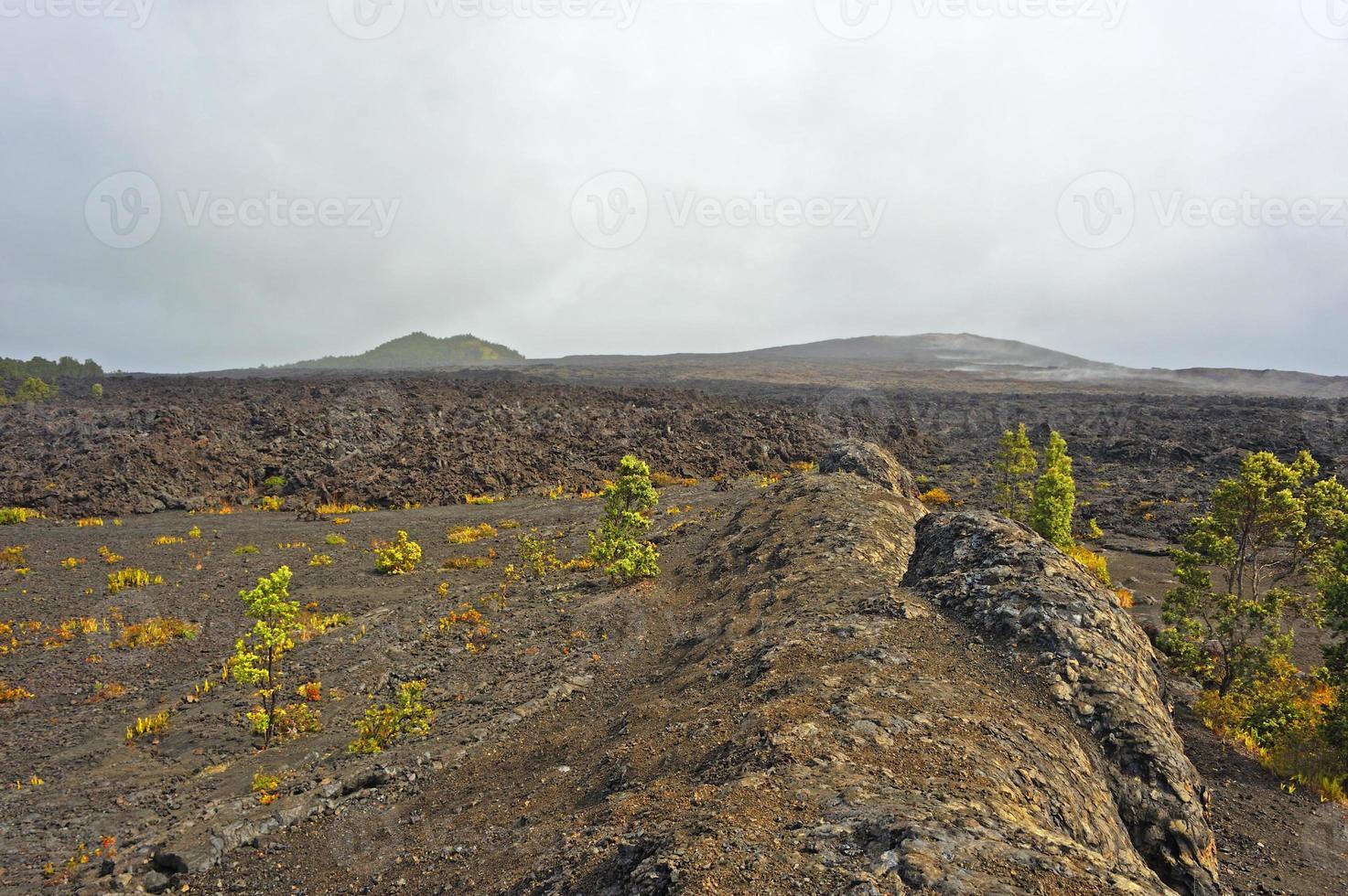 parc volcanique, grande île, hawaï photo