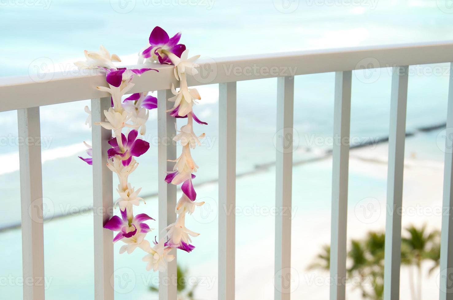 lei hawaïen photo