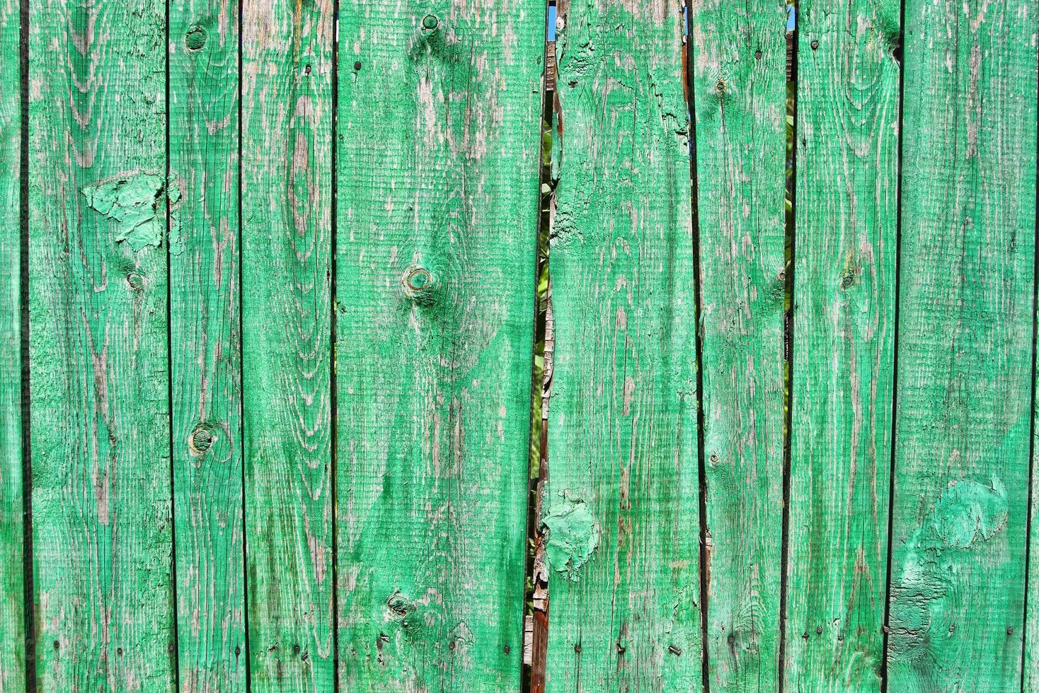 vieille clôture verte photo