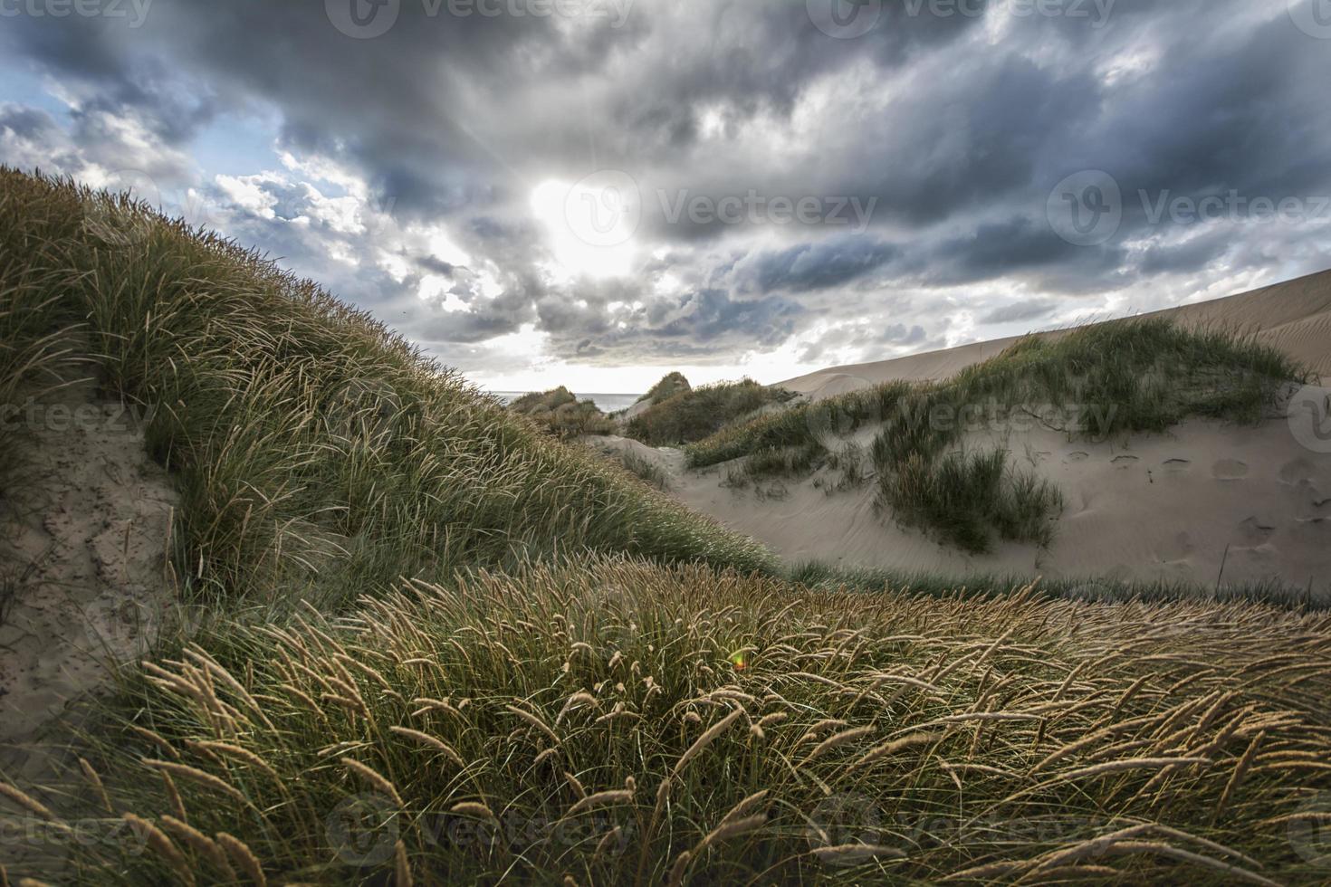 journée dans les dunes photo