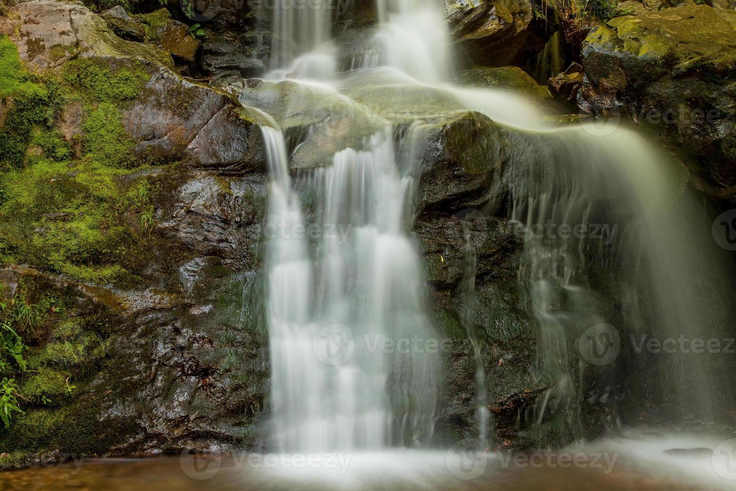 portrait de cascade photo