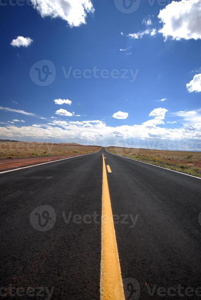 route du désert vertical photo