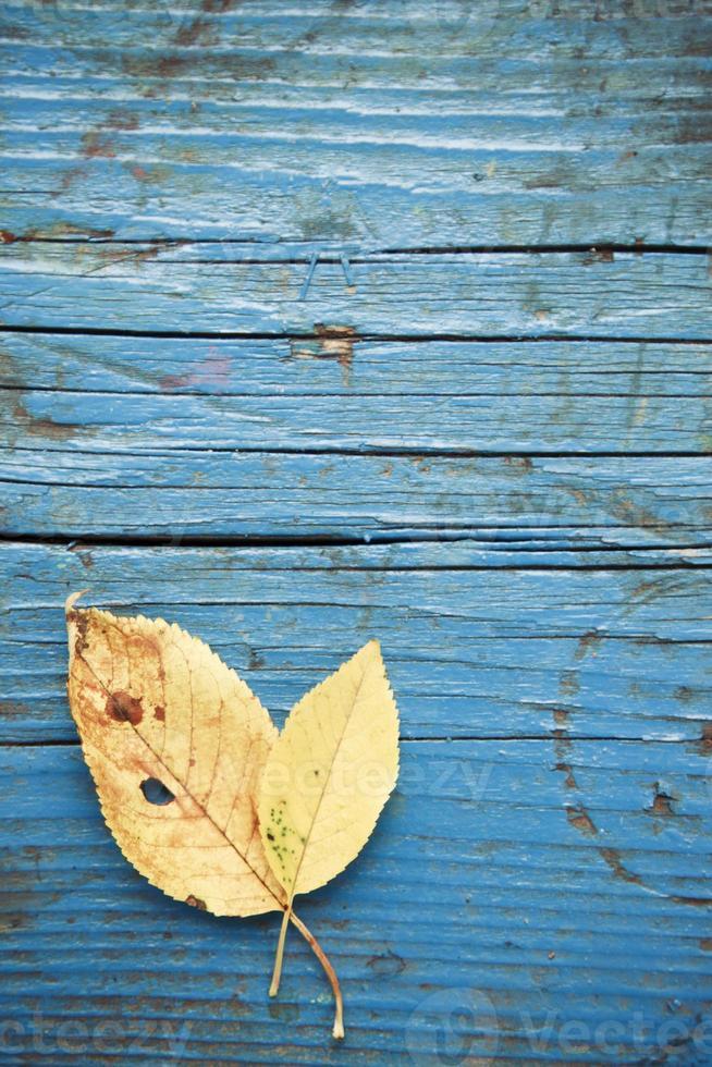 feuille sur la texture en bois photo
