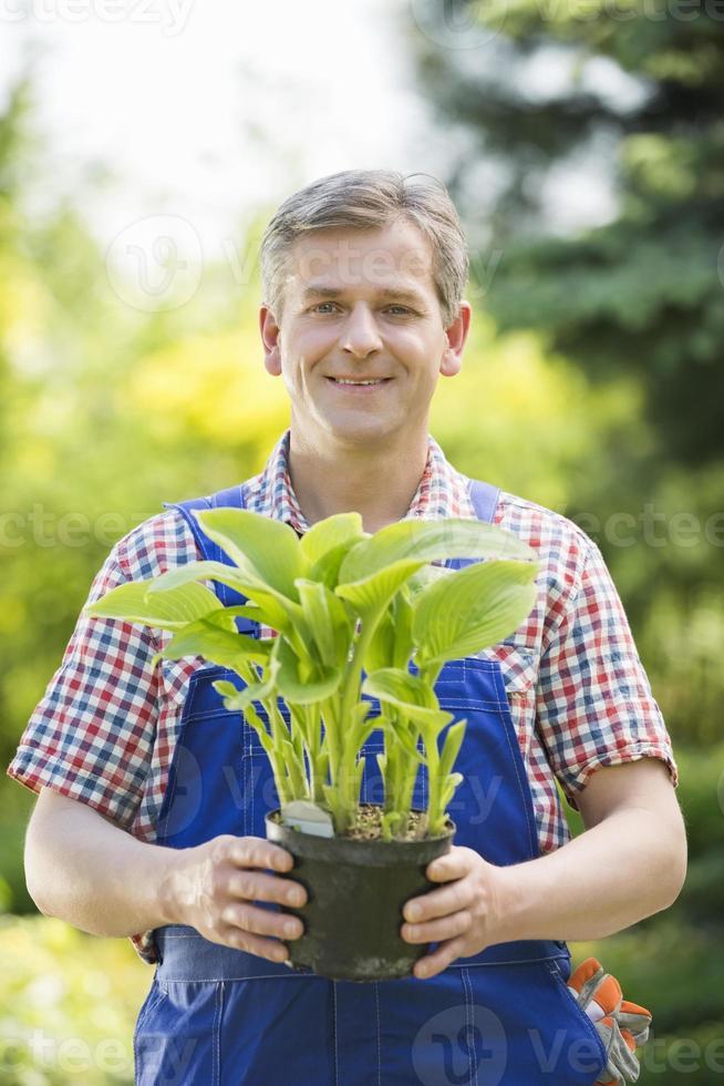 portrait, heureux, jardinier, tenue, pot, plante, pépinière photo