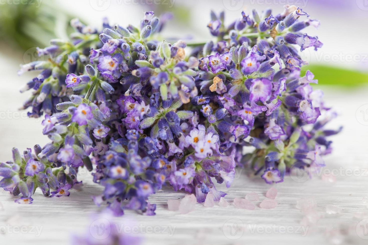 fleurs de lavande à l'huile essentielle. concept de spa et de bien-être. photo
