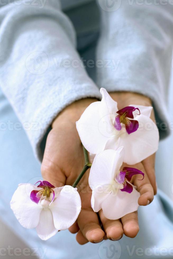 femme, tenue, orchidées, vue élevée photo