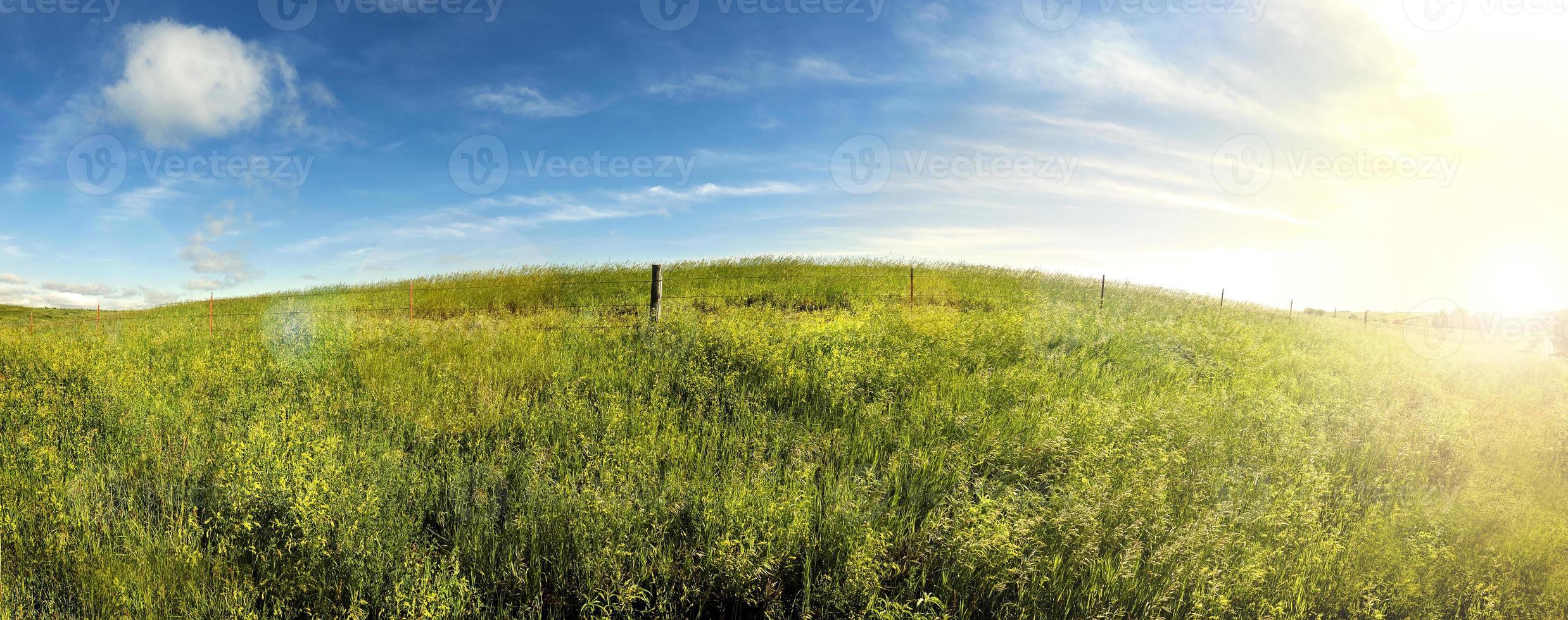 jours d'été, lever de soleil sur les terres d'herbe du sud du Dakota. photo
