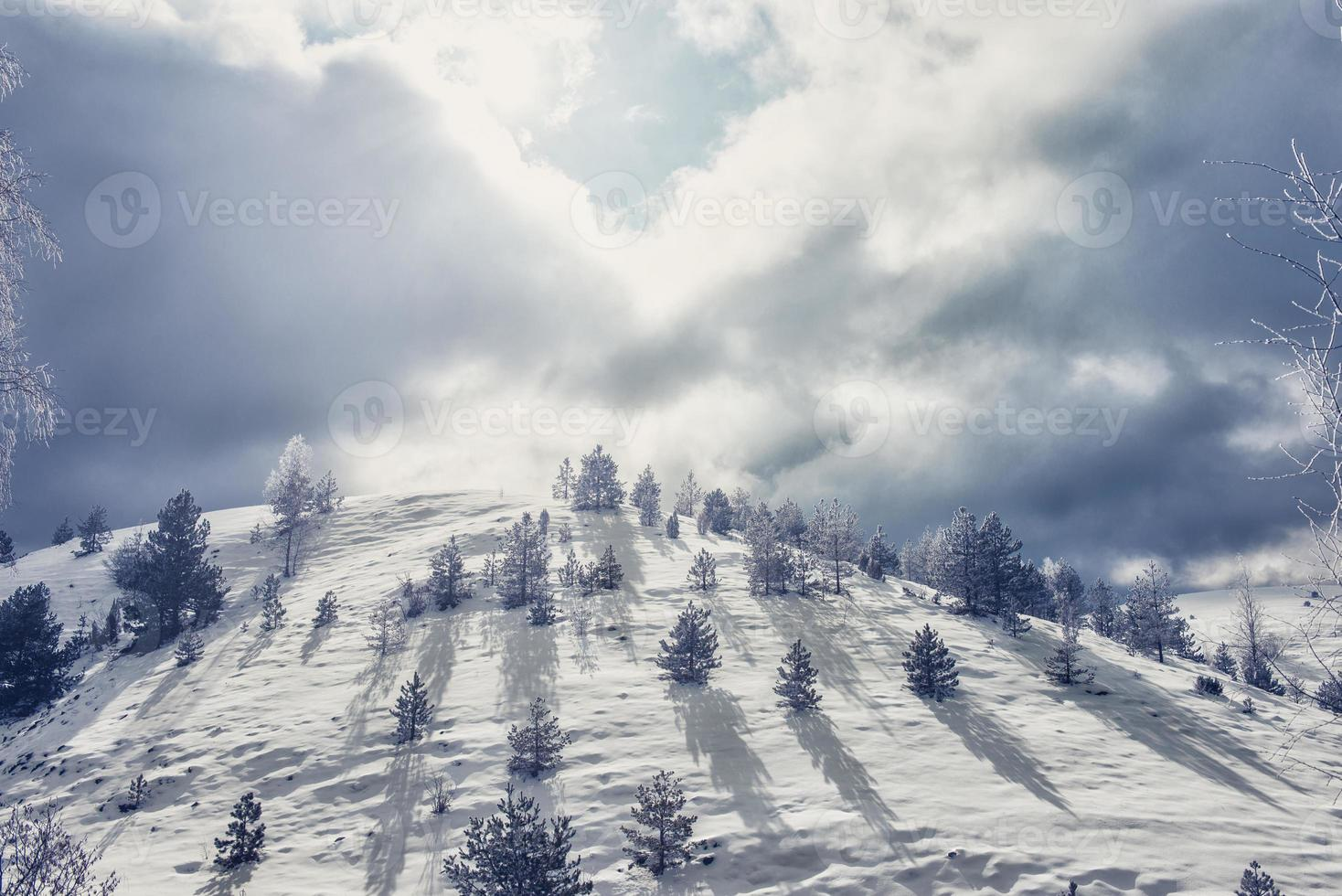 colline couverte de neige photo