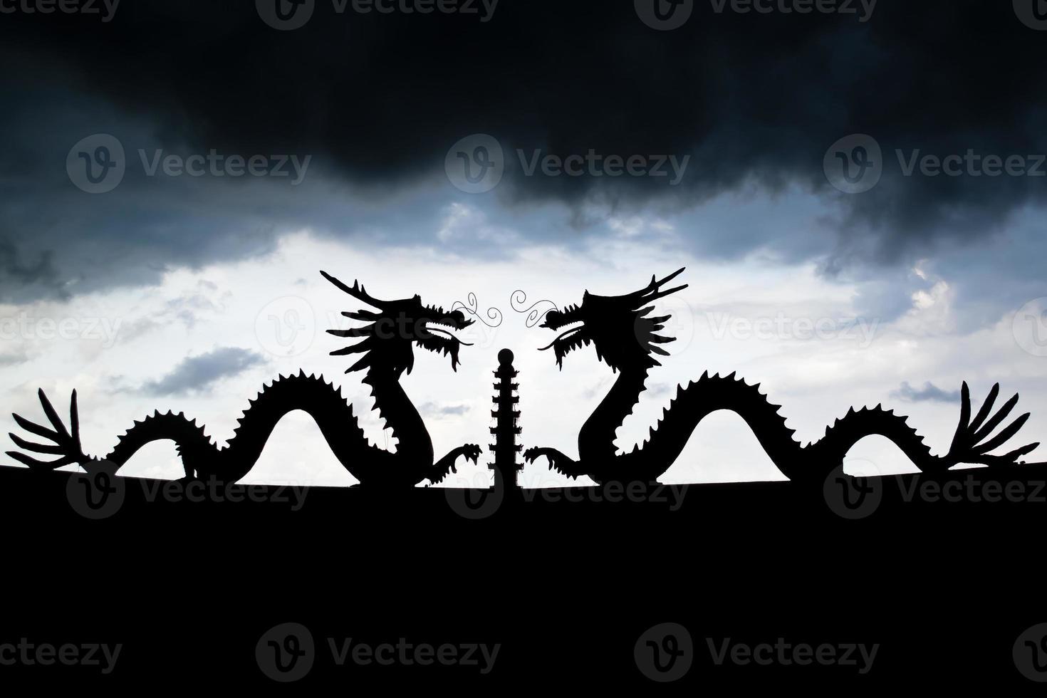 dragons jumeaux photo
