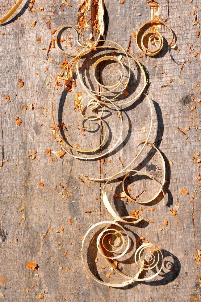 copeaux de bois photo