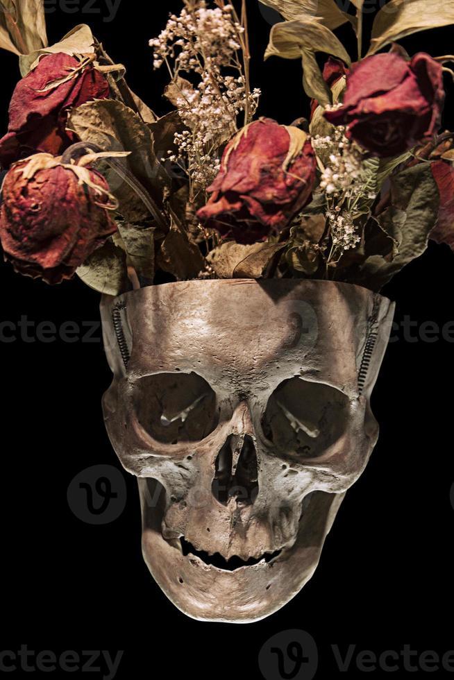 crâne humain avec roses séchées photo