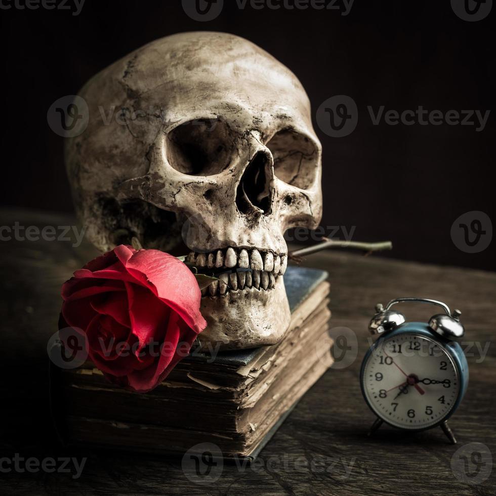 crâne de nature morte photo