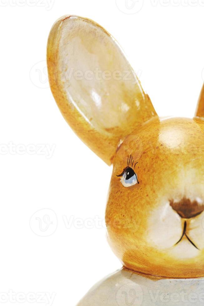 lapin de Pâques, gros plan photo