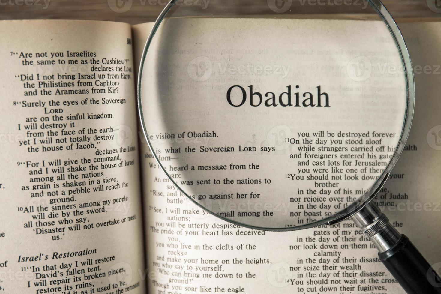 le livre d'Obadiah lisant la nouvelle version internationale photo