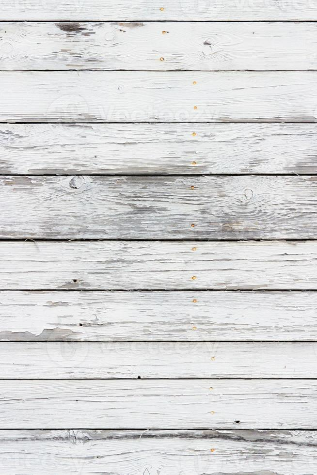 la texture du bois blanc avec fond de motifs naturels photo