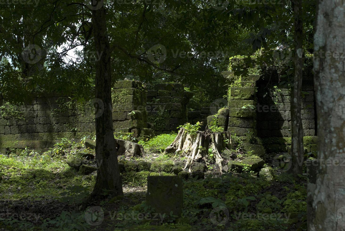 ruines antiques au fond d'une jungle photo