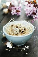 oeufs de Pâques de caille dans un bol