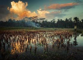 Indonésie photo