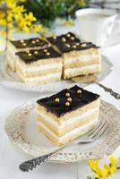 gâteau au fromage en couche polie (avec mousse de fromage bouilli) et glaçage au chocolat
