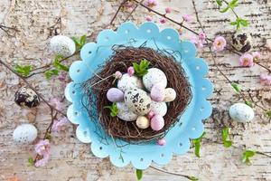 petit nid de Pâques avec des œufs de caille photo