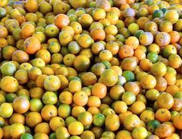 Agrumes agrandi - fond de fruits photo