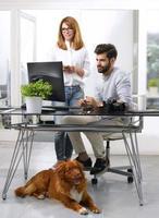homme d'affaires travaillant sur un lieu de travail acceptant les animaux domestiques photo