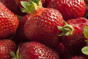 fraises fraiches