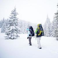 randonneur dans la forêt d'hiver