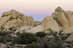 soirée désert photo