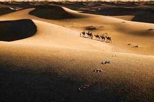 caravane dans le désert photo