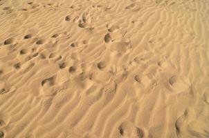 désert de dunes de sable